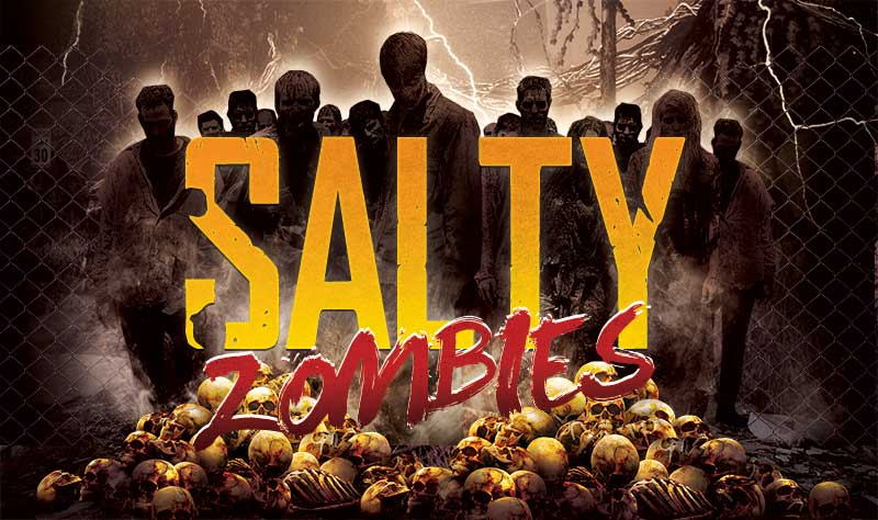 Salty Zombies Voted Best 7 Days To Die Server 5 Years In A Row